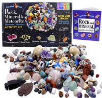Dancing Bear Rock & Mineral Collection Activity Kit (200 Pc Set) with Meteorite, Real Shark Teeth Fossils, Arrowheads, Crystals, Gemstones, Treasure Hunt ID Sheet, STEM Science Education, Made in USA: Toys & Games